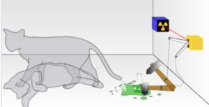 Superposition of Schrodinger's Cat